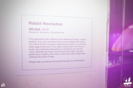 rabbit-revolution-rr02-11-5-16-107